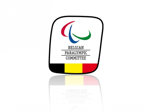 audit communication comité paralympique